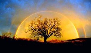 rainbow_pictures_1